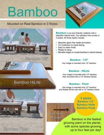 ColorPlak® Bamboo - Mounted Art or Photography in 3 Styles