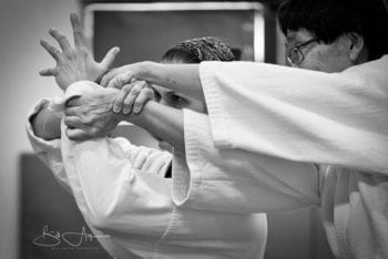 Example of professional photography on Aikido Sarasota website