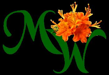 Logo Design for Green Developer, Asheville, NC