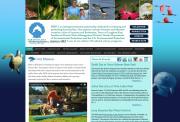 Professional Non-Profit Web Design Example |Sarasota Bay Estuary Program