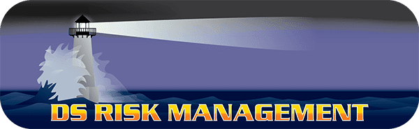 Vector Logo design for DS Risk Management in Sarasota