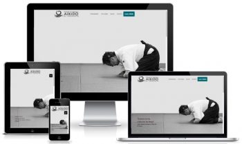 2017 Sarasota Web Design for Aikido Sarasota